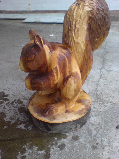 Squirrel chainsaw carvings